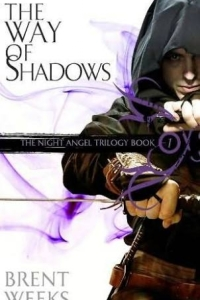 The Way of Shadows (Night Angel #1)