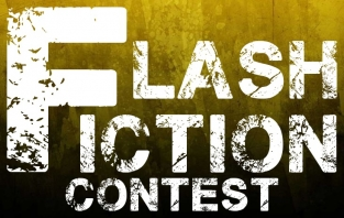 Flash-Fiction Contest - Results